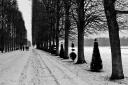 Versailles_03_9290