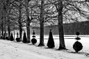 Versailles_04_9288