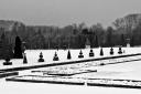Versailles_09_9372
